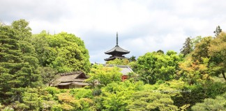 วัดนินนาจิ (Ninna-ji) มรดกโลก ที่เกียวโต