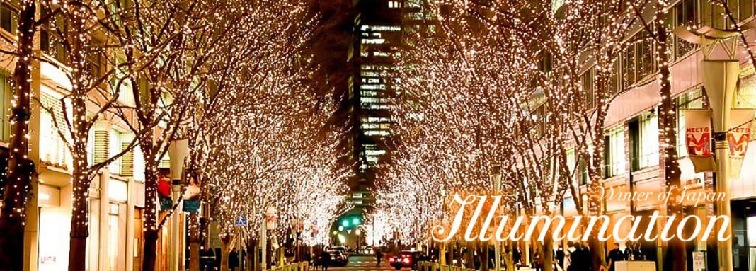 แนะนำเว็บไซต์ รวมแหล่งชมเทศกาลประดับไฟหน้าหนาวในญี่ปุ่น
