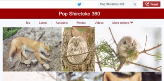 สัตว์โลกสุดแบ๊วบนเกาะฮอกไกโด ฝีมือช่างภาพสัตว์ Pop Shiretoko 360