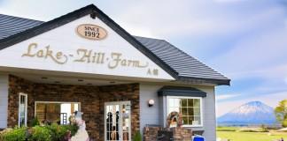 บรรยากาศในร้านคาเฟ่ Lke Hill Farm มองเห็นทุ่งหญ้าสีเขียวเบื้องหลังเห็นเขา Yotei (โยเทอิ) ได้อย่างชัดเจนสวยงาม