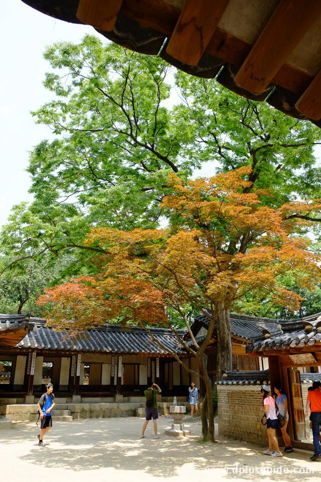 สวนลับฮูวอนช่วงฤดูใบไม้ร่วง