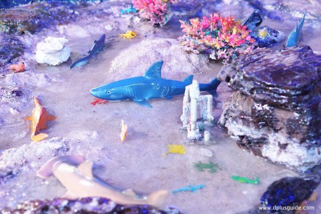 อีกหนึ่งไฮไลท์โซน Beach คือเรื่องราวโลกใต้ทะเลน้ำลึก