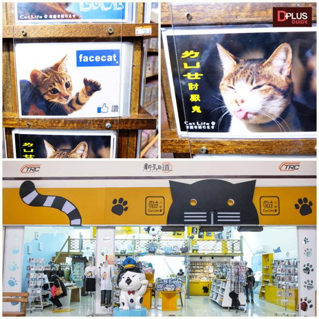 ร้านเอาใจสำหรับคนรักแมว
