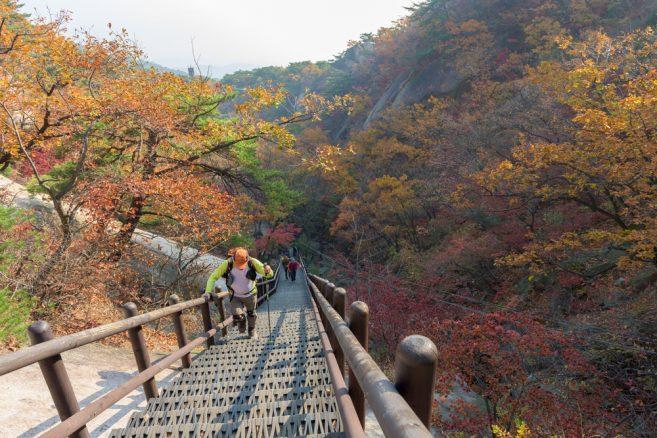 อุทยานแห่งชาติบุคฮันซาน (Bukhansan National Park)