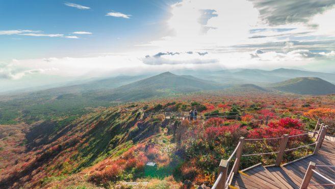 อุทยานแห่งชาติฮัลลาซาน (Hallasan National Park)