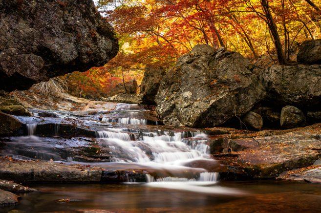 อุทยานแห่งชาติจิริชาน (Jirisan National Park)