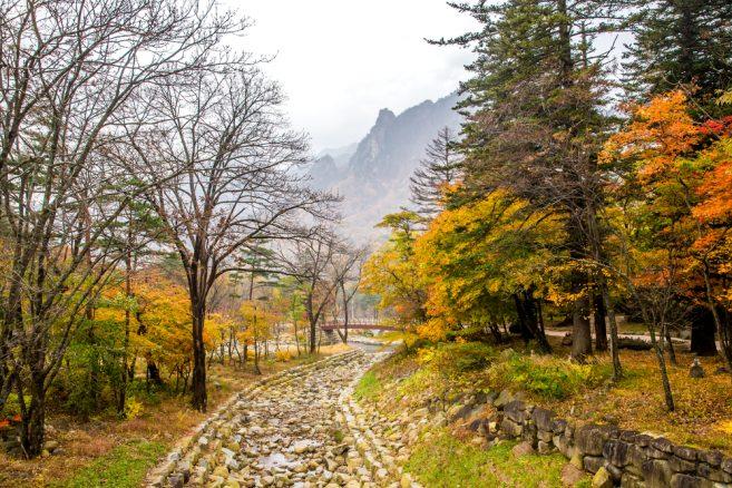 อุทยานแห่งชาติซอรัคซาน (Seoraksan National Park)