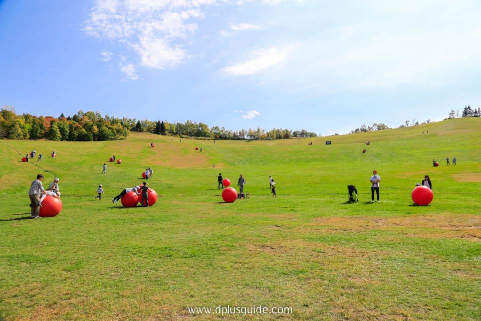 กิจกรรมกลางแจ้งภายในสวน Takino Suzuran