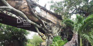 สวนสัตว์ใจกลางกรุง สวนสัตว์ดุสิต (Dusit Zoo)