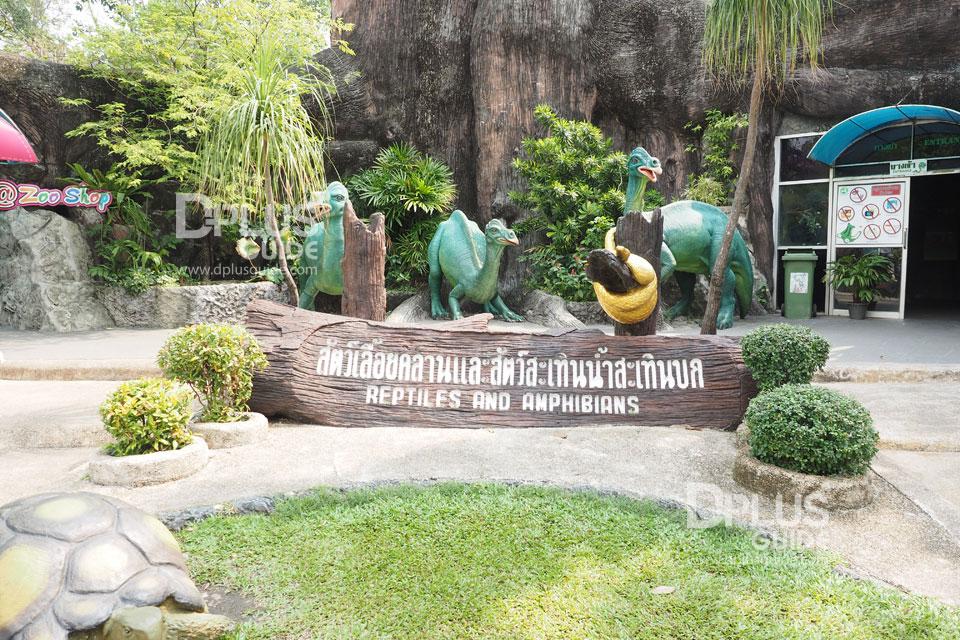 สัตว์เลื้อยคลานและสัตว์สะเทินน้ำสะเทินบก สวนสัตว์ดุสิต (Dusit Zoo)