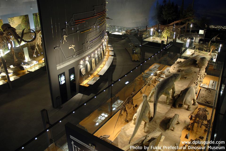 เที่ยวคิวชู พิพิธภัณฑ์ไดโนเสาร์สุดอลังการ Fukui Prefectural Dinosaur