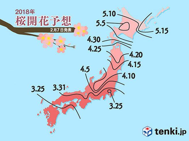 พยากรณ์ซากุระ 2018 มาแล้ว! ปีนี้โตเกียวบานไวกว่าปกติเล็กน้อย