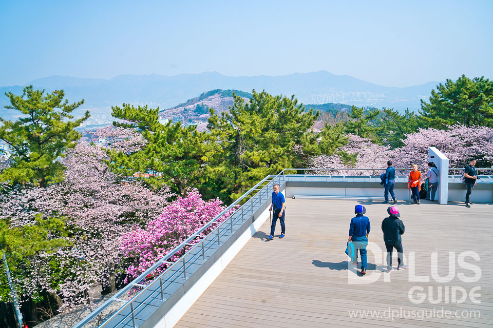บริเวณชั้น 2 จะเป็นระเบียงกว้าง สามารถเดินชมทัศนียภาพของเมืองจินแฮได้ทั้ง 4 มุม
