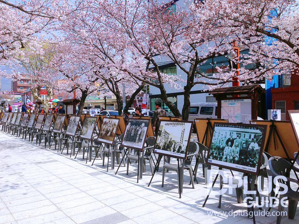 ย้อนวันวาน กับภาพถ่ายเมืองจินแฮในอดีต ท่ามกลางอุโมงค์พ็อตกต