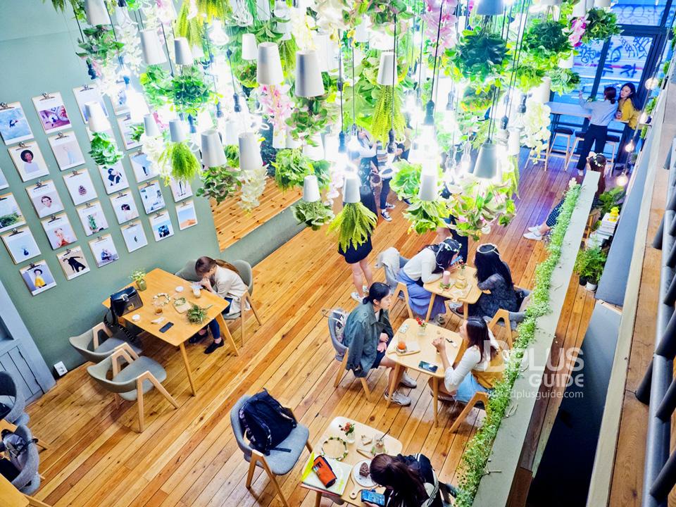 ปักหมุด 3 คาเฟ่ดอกไม้ที่ไม่ควรพลาด ที่ SEOUL