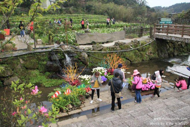 """สีสันรอบๆ งานเทศกาลดอกคาล่าลิลลี่ """"2018 Zhuzihu Calla Lily Festival"""" ที่ไทเป"""