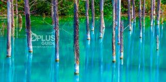 สระมรกตหรือบึงน้ำสีฟ้า Blue pond Aoiike