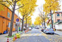 ถนนซัมชองดองกิล Samcheongdong-gil